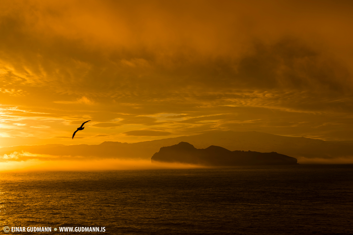 Vestmannaeyjar sunrise