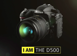 Nikon D500 for bird photography