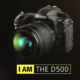 Nikon D500 for bird photography